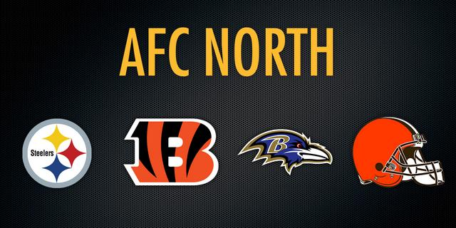 NFL Preview: AFC North