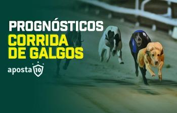Corridas de galgos UK Swindon e Sunderland 21/04