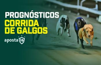 Corridas de Galgos Americanas Palm Beach & Orange Park 23/10